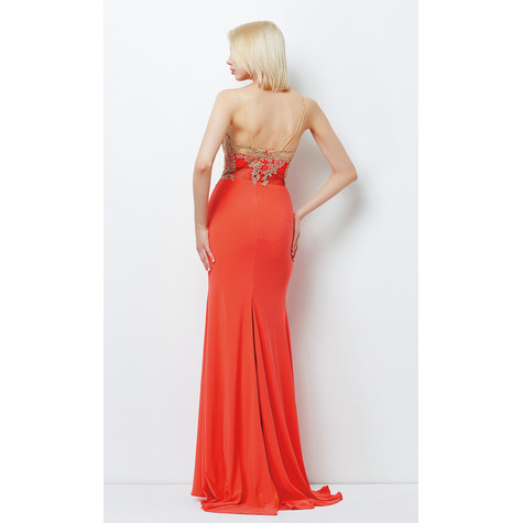 Lore Salmon & Pink Mesh Detail Long Dress