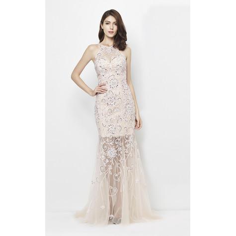 Lore Pink & Nudes Floral Mesh Pattern Long Dress