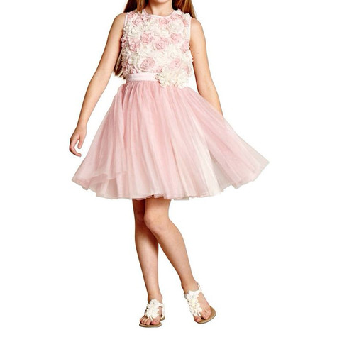 Yumi Girls 3-d Floral Print Mesh Finish Dress